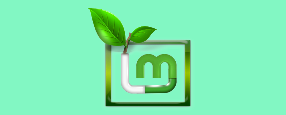 Пошаговая установка Linux Mint