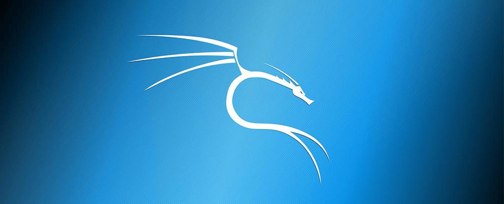 Инструкция по установке Kali Linux