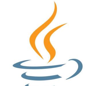 Sun Microsystems начала разработку технологии Java